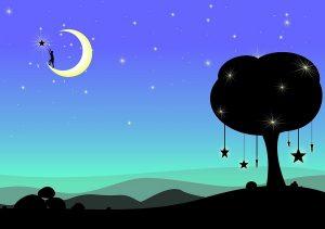 attraper ses rêves de la nuit
