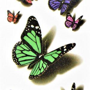 couleur de jolis papillons