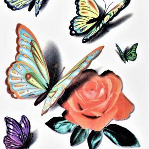papillons en 3D