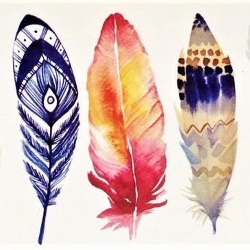 plumes de couleur