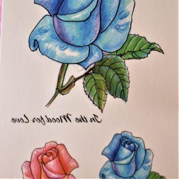 Rose bleu d'azur